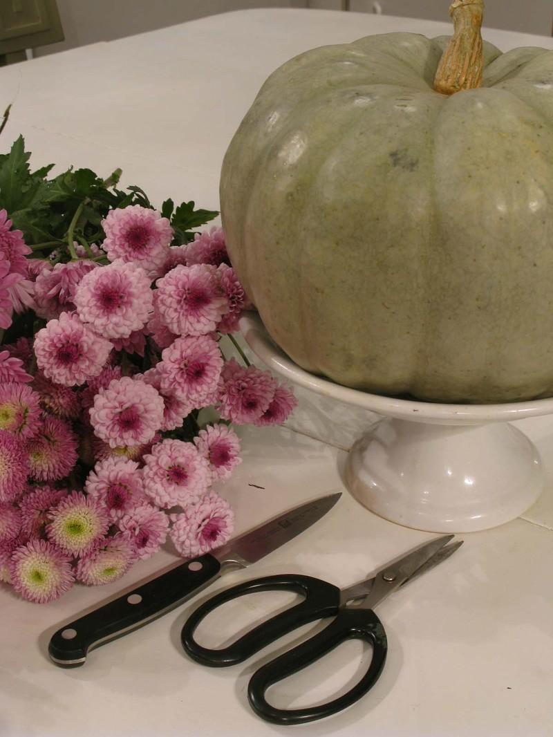 Greenpumpkinflowers1